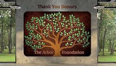 Donor Wall Idea 5